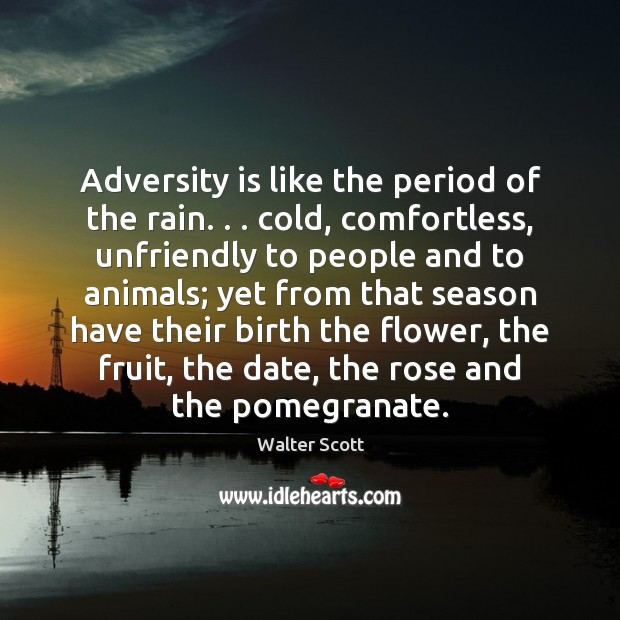 Adversity is like the period of the rain. . . cold, comfortless, unfriendly to Walter Scott Picture Quote