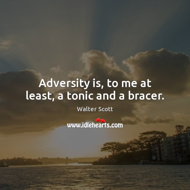 Adversity is, to me at least, a tonic and a bracer. Walter Scott Picture Quote