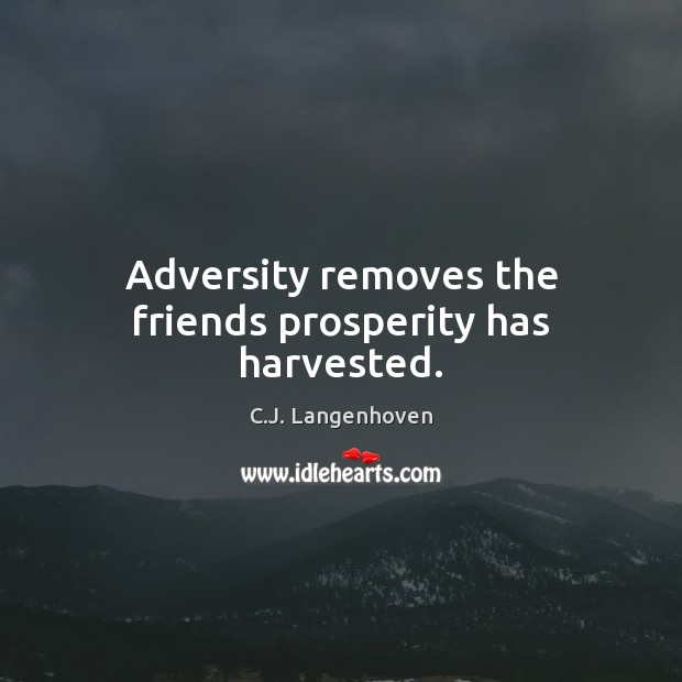 Image, Adversity removes the friends prosperity has harvested.