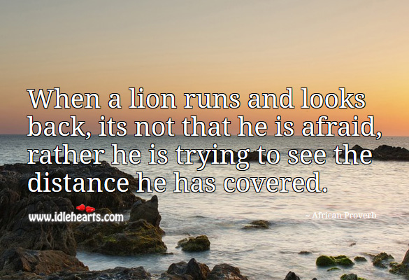 When a lion runs and looks back, its not that he is afraid, rather he is trying to see the distance he has covered. African Proverbs Image