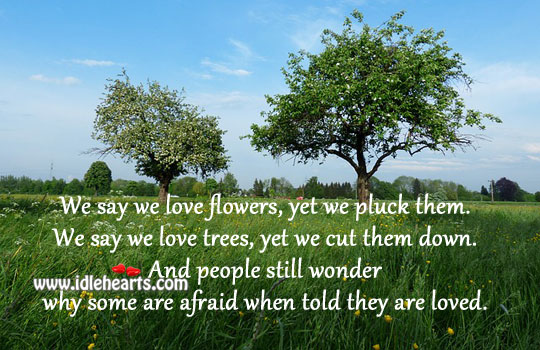 We are afraid when told we are loved. Afraid Quotes Image