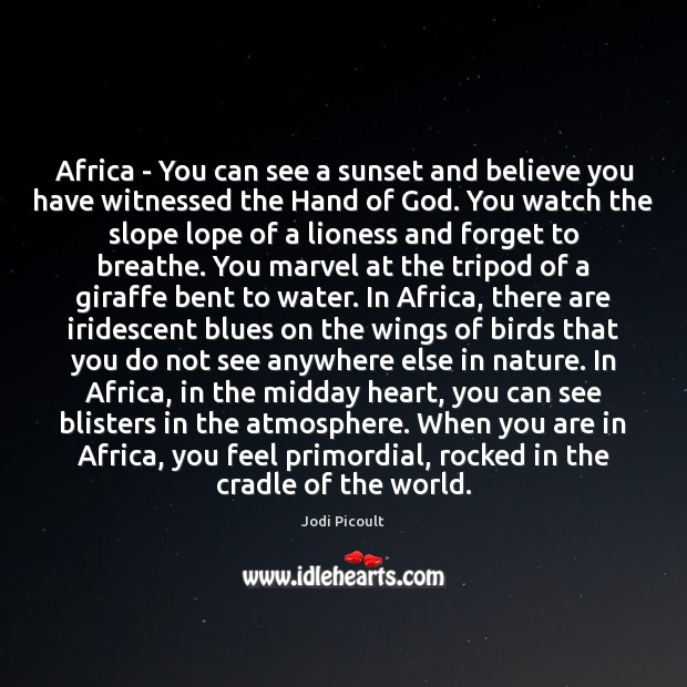 Africa – You can see a sunset and believe you have witnessed Image