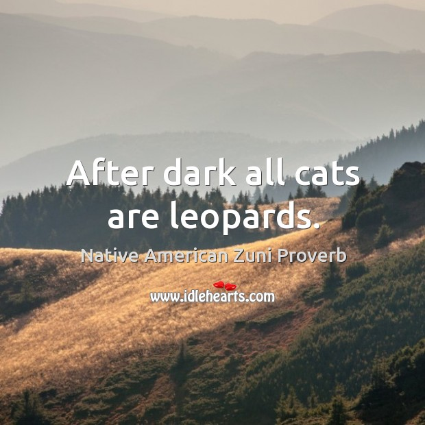 After dark all cats are leopards. Native American Zuni Proverbs Image