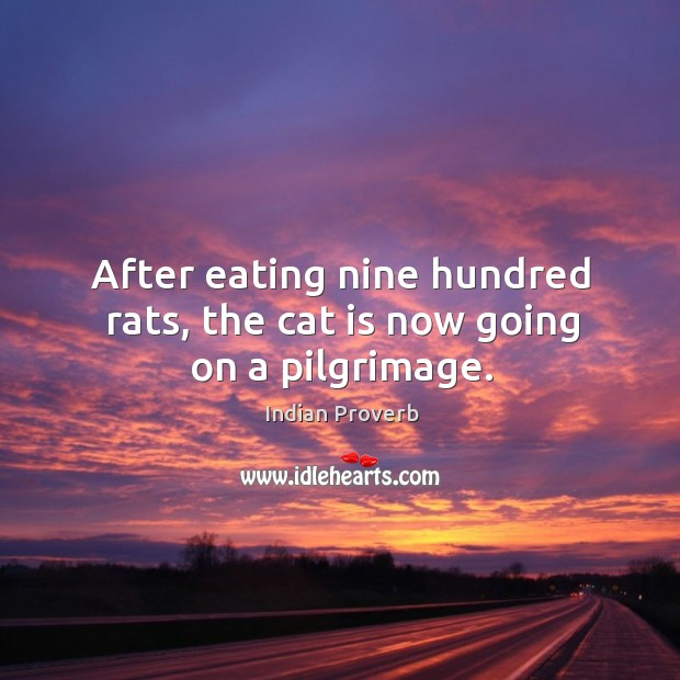 Image, After eating nine hundred rats, the cat is now going on a pilgrimage.