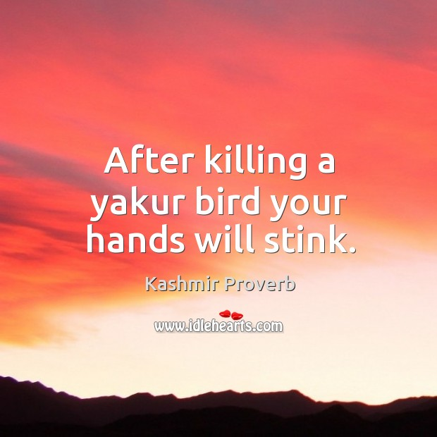 After killing a yakur bird your hands will stink. Kashmir Proverbs Image