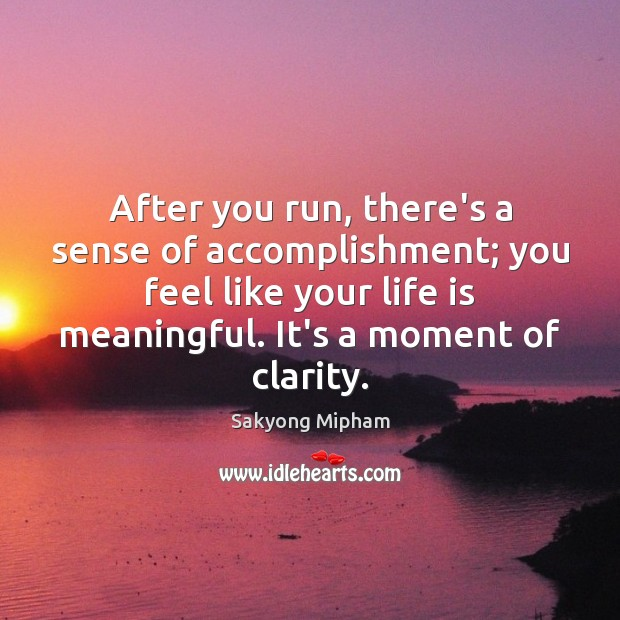 After you run, there's a sense of accomplishment; you feel like your Sakyong Mipham Picture Quote