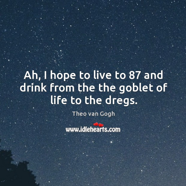 Picture Quote by Theo van Gogh