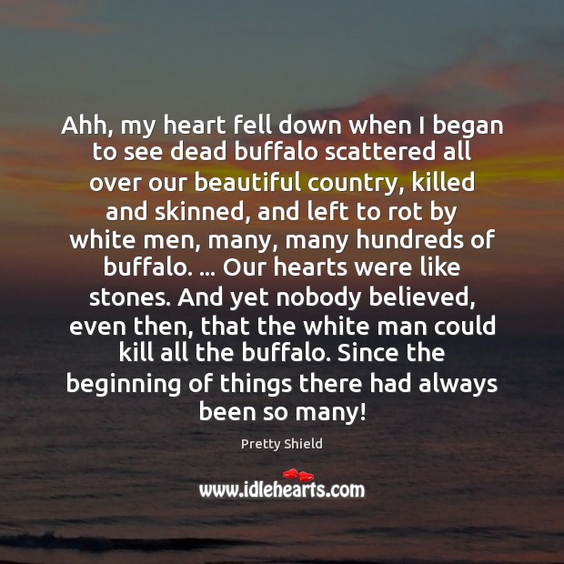 Image, Ahh, my heart fell down when I began to see dead buffalo