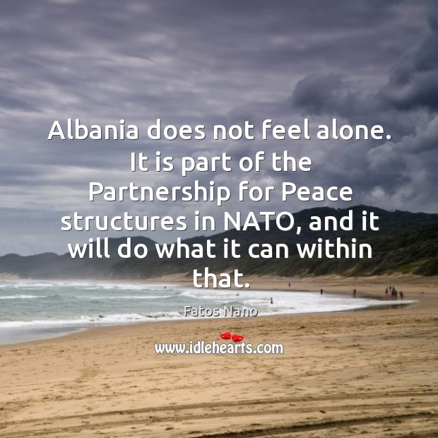 Image, Albania does not feel alone.