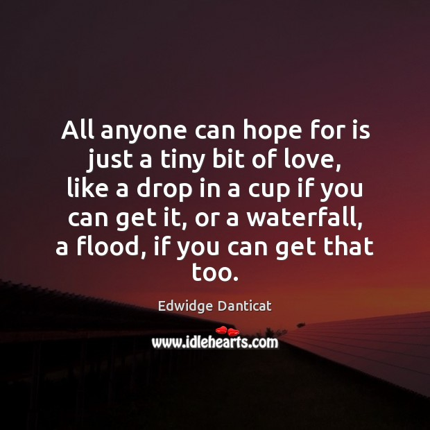 All anyone can hope for is just a tiny bit of love, Edwidge Danticat Picture Quote