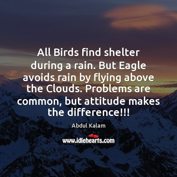 Image, All Birds find shelter during a rain. But Eagle avoids rain by