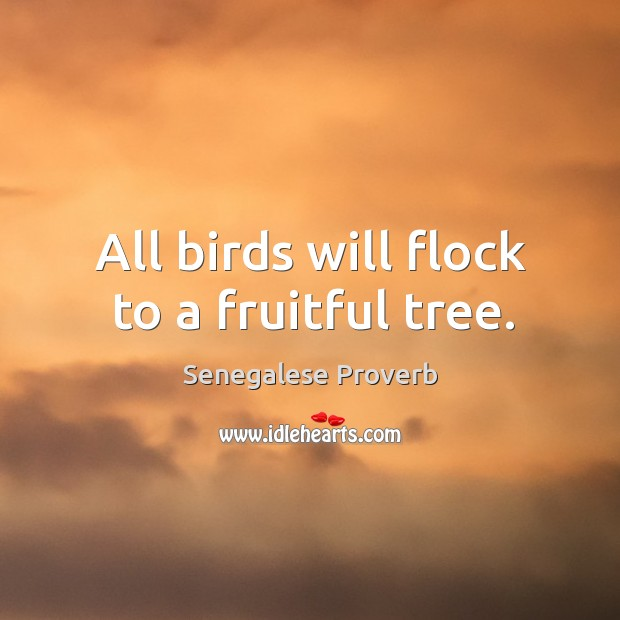 All birds will flock to a fruitful tree. Senegalese Proverbs Image