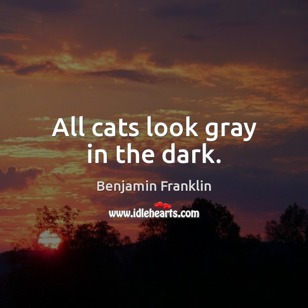 All cats look gray in the dark. Image