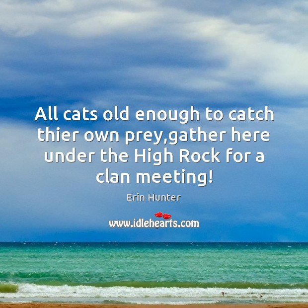 All cats old enough to catch thier own prey,gather here under Image