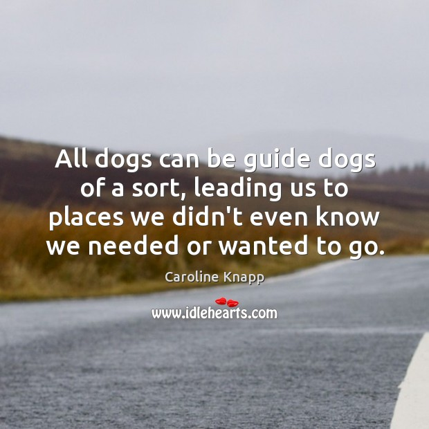 All dogs can be guide dogs of a sort, leading us to Caroline Knapp Picture Quote