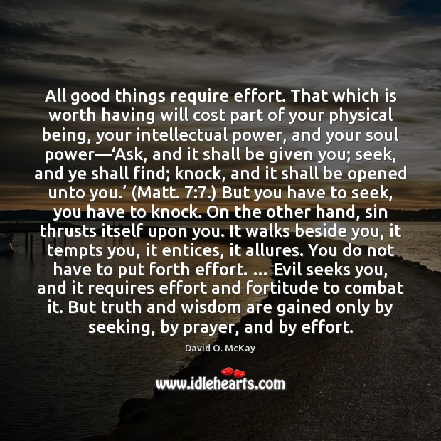 All good things require effort. That which is worth having will cost David O. McKay Picture Quote