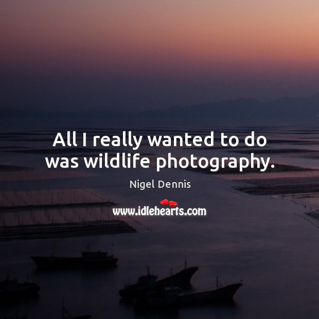 All I really wanted to do was wildlife photography. Image
