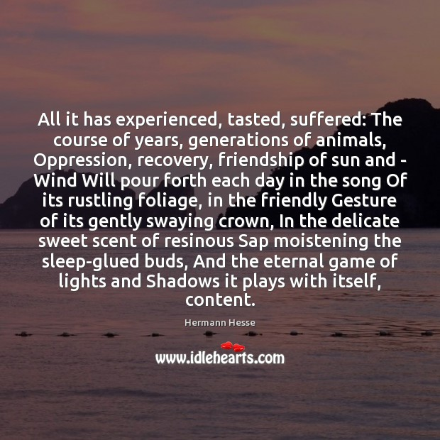 All it has experienced, tasted, suffered: The course of years, generations of Hermann Hesse Picture Quote