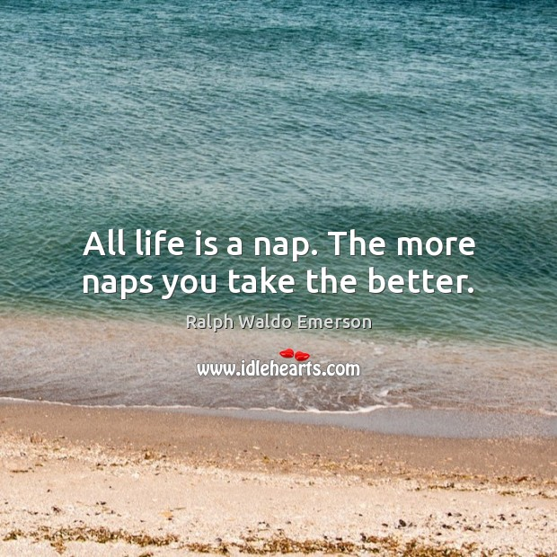 Image, All life is a nap. The more naps you take the better.