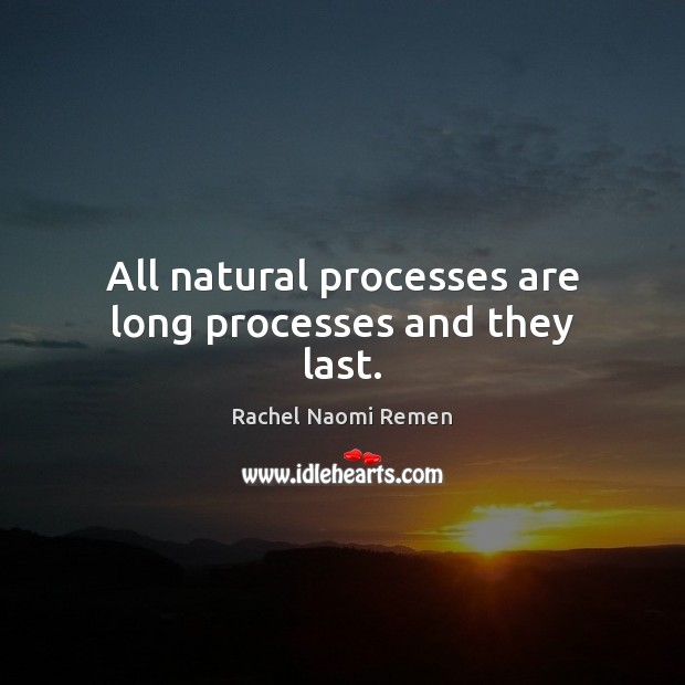 All natural processes are long processes and they last. Rachel Naomi Remen Picture Quote