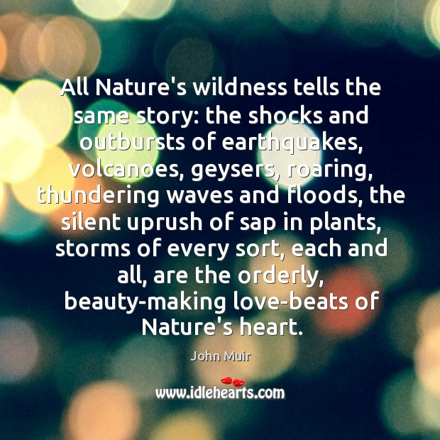 All Nature's wildness tells the same story: the shocks and outbursts of Image