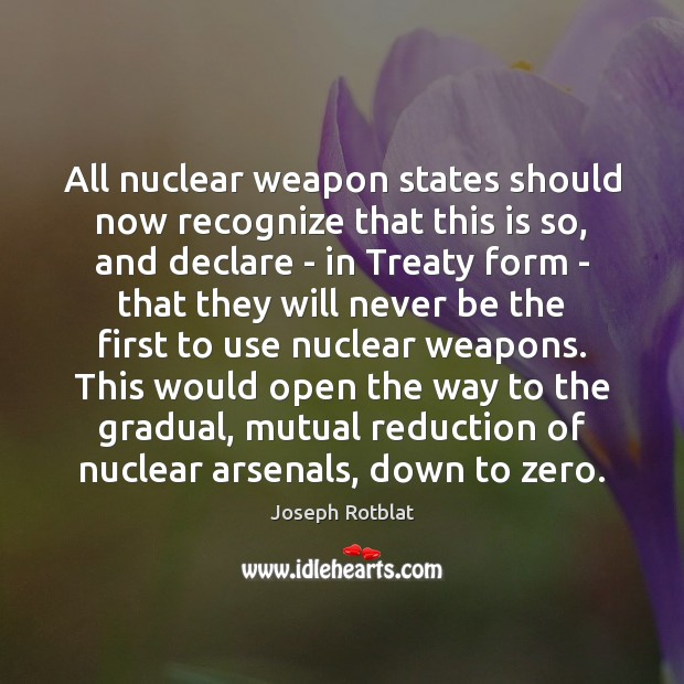 states ought not possess nuclear weapons essay Should we give iran the bomb paper arguing that the slow spread of nuclear weapons might not be so that the united states ought to simply give iran.