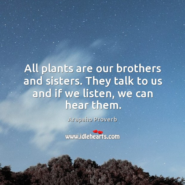 All plants are our brothers and sisters. Arapaho Proverbs Image
