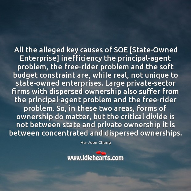 Image, All the alleged key causes of SOE [State-Owned Enterprise] inefficiency the principal-agent