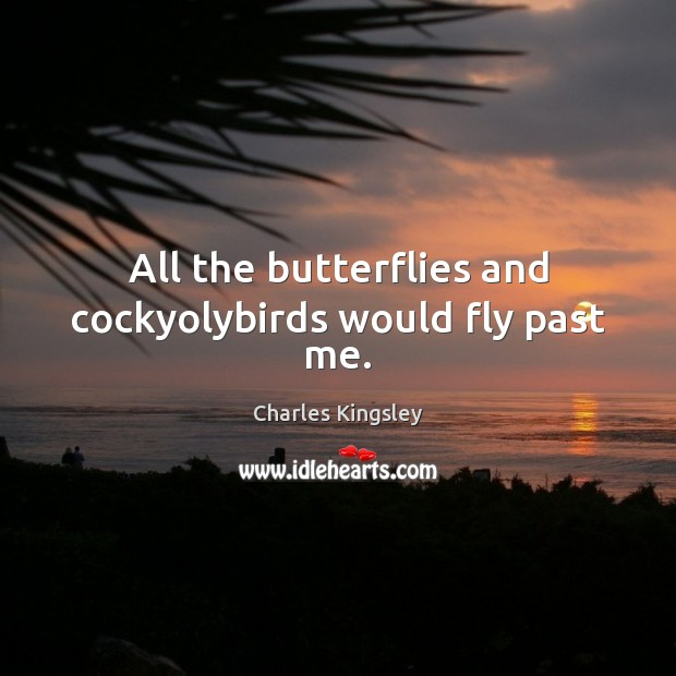 All the butterflies and cockyolybirds would fly past me. Charles Kingsley Picture Quote