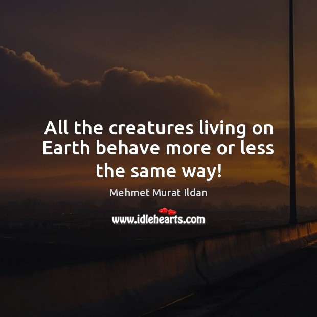 Image, All the creatures living on Earth behave more or less the same way!
