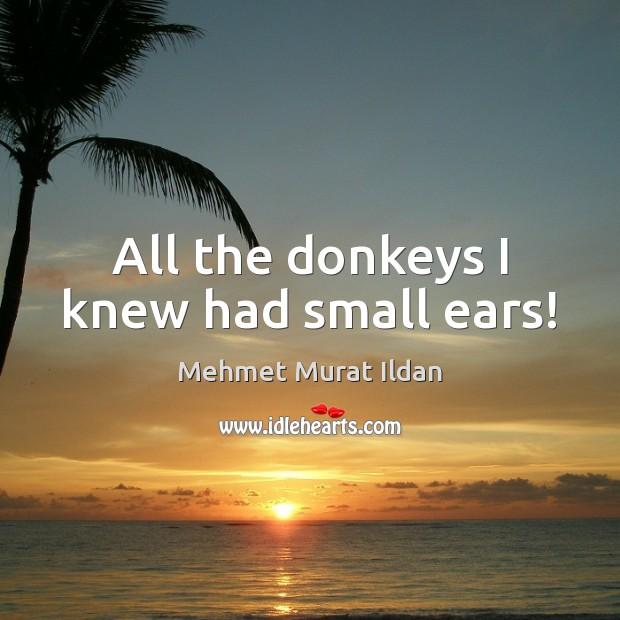 All the donkeys I knew had small ears! Image