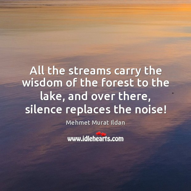 All the streams carry the wisdom of the forest to the lake, Image