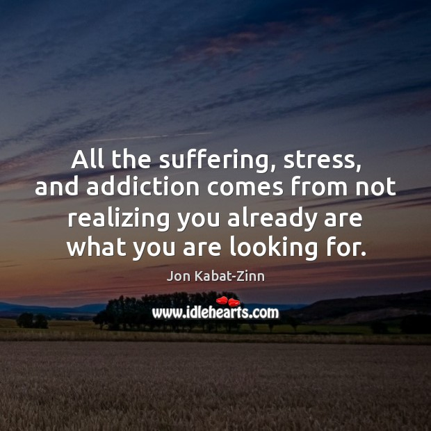 All the suffering, stress, and addiction comes from not realizing you already Image