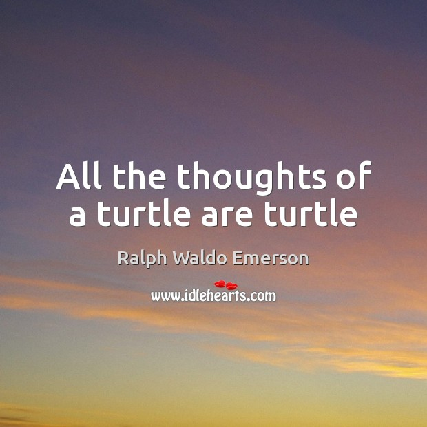 All the thoughts of a turtle are turtle Image