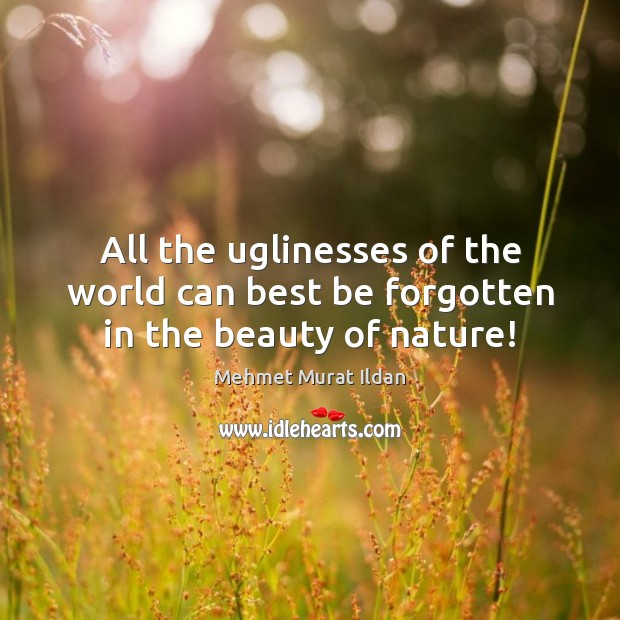 All the uglinesses of the world can best be forgotten in the beauty of nature! Image