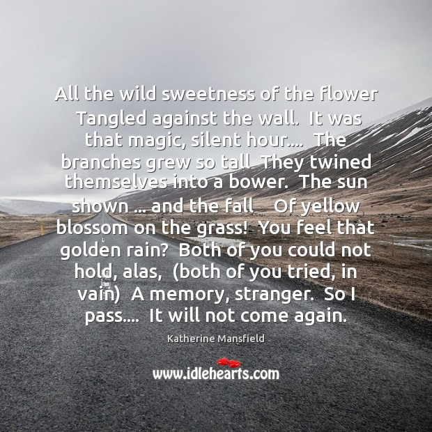 All the wild sweetness of the flower  Tangled against the wall.  It Katherine Mansfield Picture Quote