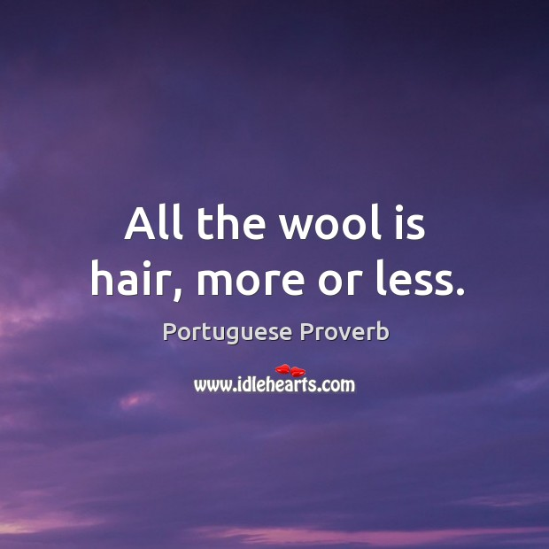 All the wool is hair, more or less. Image