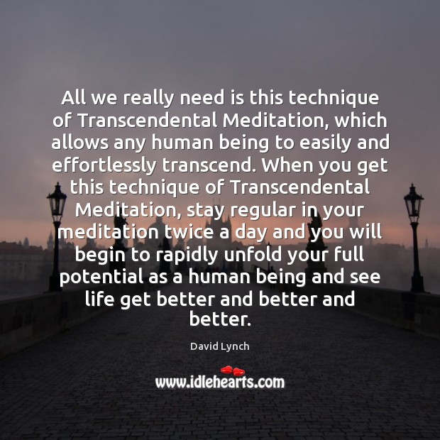 All we really need is this technique of Transcendental Meditation, which allows David Lynch Picture Quote