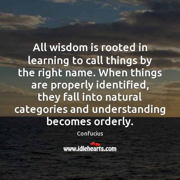 All wisdom is rooted in learning to call things by the right Image