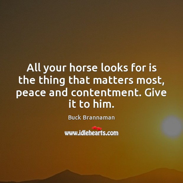 All your horse looks for is the thing that matters most, peace Buck Brannaman Picture Quote