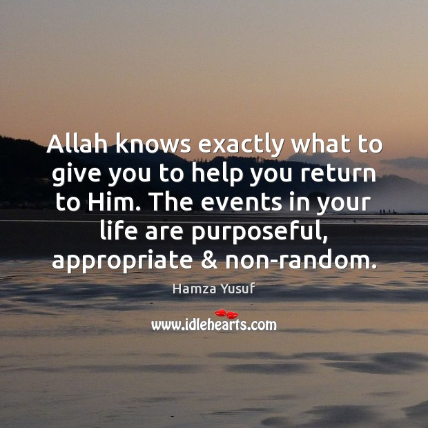 Allah knows exactly what to give you to help you return to Hamza Yusuf Picture Quote