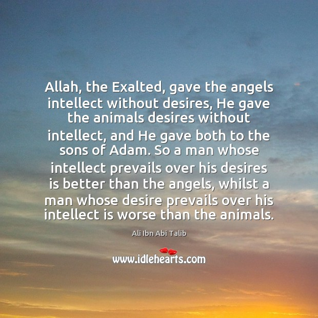 Allah, the Exalted, gave the angels intellect without desires, He gave the Ali Ibn Abi Talib Picture Quote