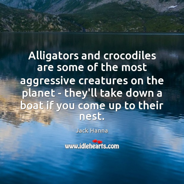 Alligators and crocodiles are some of the most aggressive creatures on the Jack Hanna Picture Quote