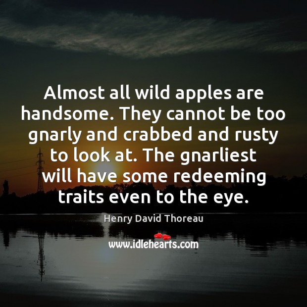 Image, Almost all wild apples are handsome. They cannot be too gnarly and