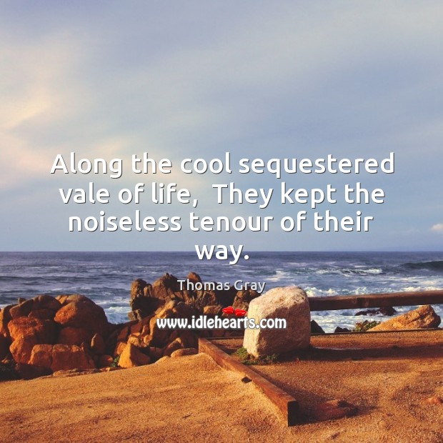 Along the cool sequestered vale of life,  They kept the noiseless tenour of their way. Thomas Gray Picture Quote