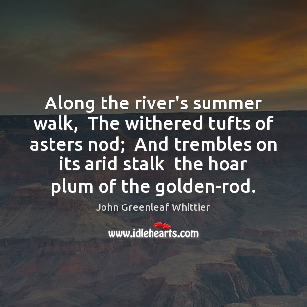 Along the river's summer walk,  The withered tufts of asters nod;  And John Greenleaf Whittier Picture Quote