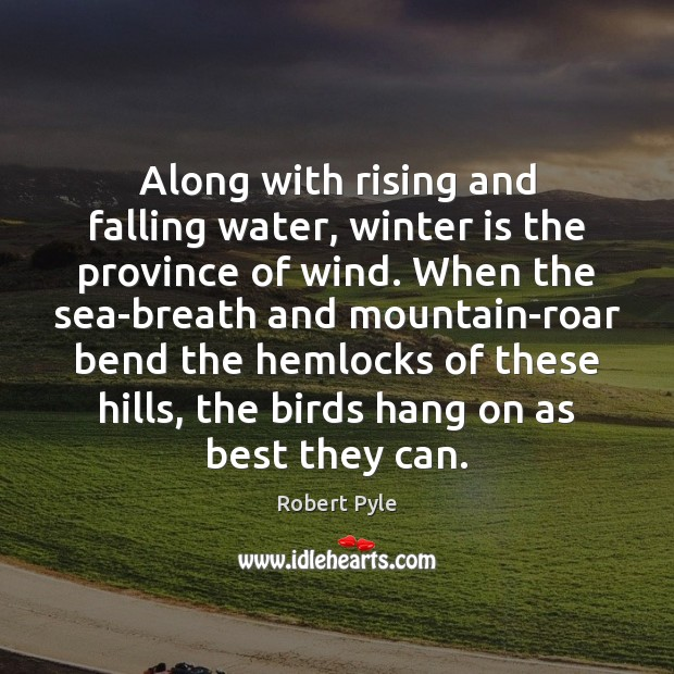 Along with rising and falling water, winter is the province of wind. Image