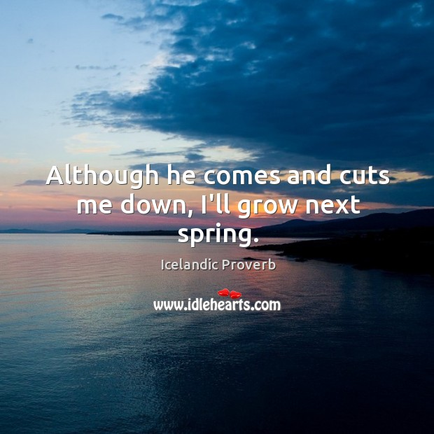 Although he comes and cuts me down, I'll grow next spring. Icelandic Proverbs Image