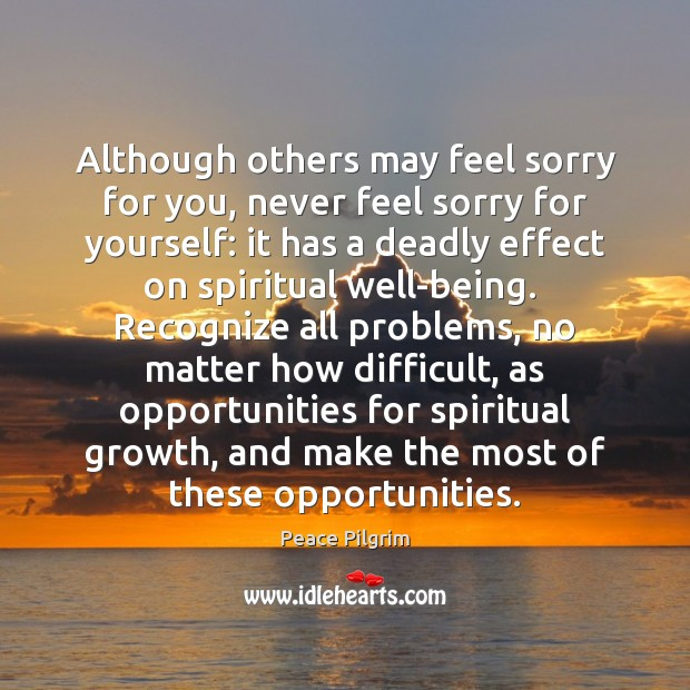 Although others may feel sorry for you, never feel sorry for yourself: Peace Pilgrim Picture Quote
