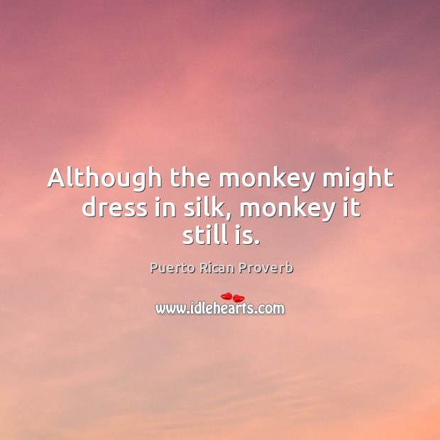Although the monkey might dress in silk, monkey it still is. Puerto Rican Proverbs Image